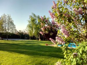 jardí casa rural