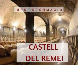 CELLER CASTELL DEL REMEI